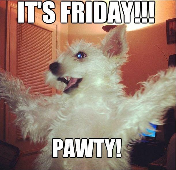 It's Friday. Pawty! Picture Quote #1