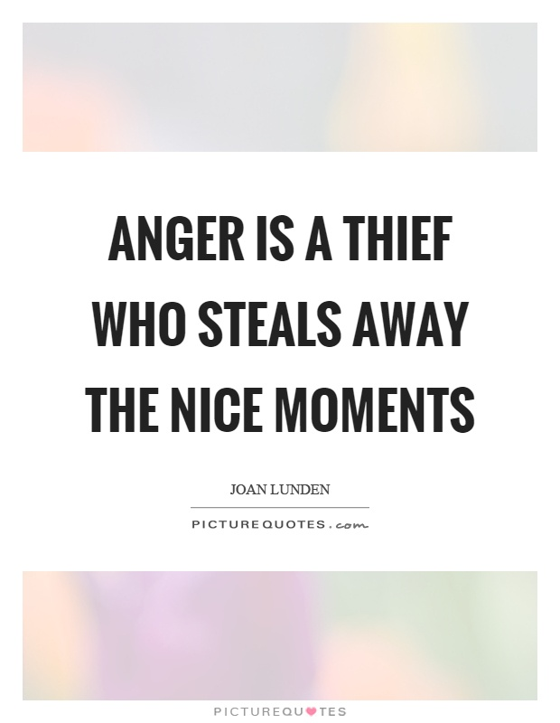 Anger is a thief who steals away the nice moments Picture Quote #1