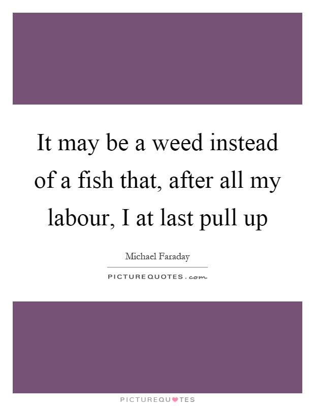 It may be a weed instead of a fish that, after all my labour, I at last pull up Picture Quote #1