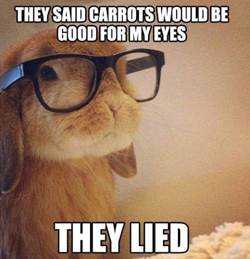 They said carrots would be good for my eyes. They lied Picture Quote #1