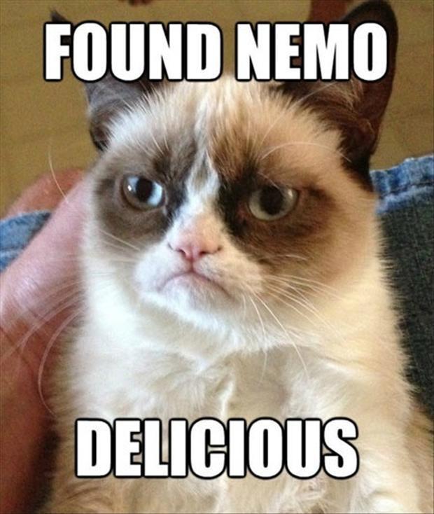 Found Nemo. Delicious Picture Quote #1