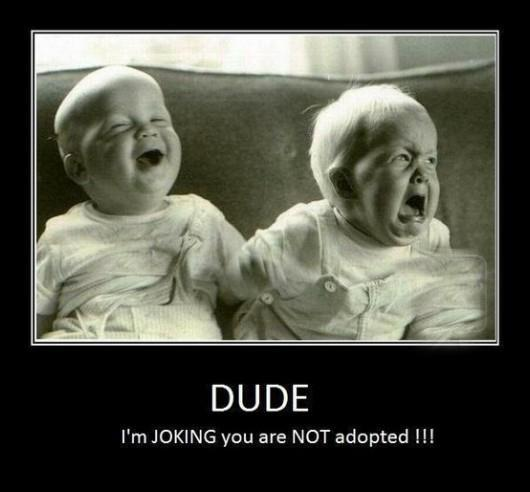 Dude, I'm joking you are not adopted Picture Quote #1