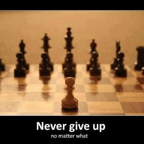 Never give up, no matter what Picture Quote #1