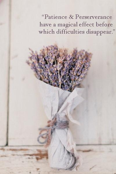 Patience and perseverance have a magical effect before which difficulties disappear and obstacles vanish Picture Quote #1