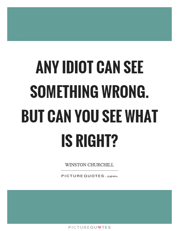 Any idiot can see something wrong. But can you see what is right? Picture Quote #1