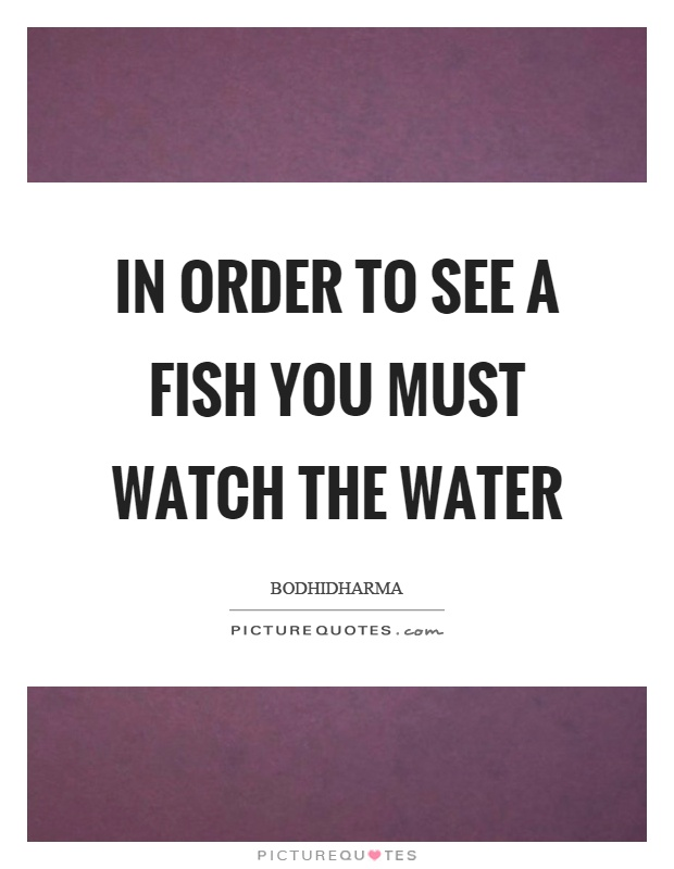 how to see fish in water