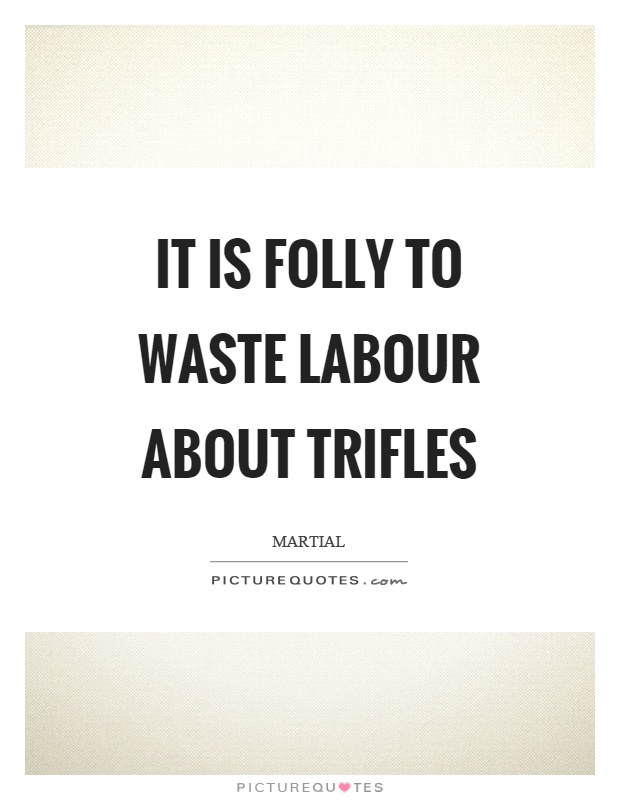 It is folly to waste labour about trifles Picture Quote #1