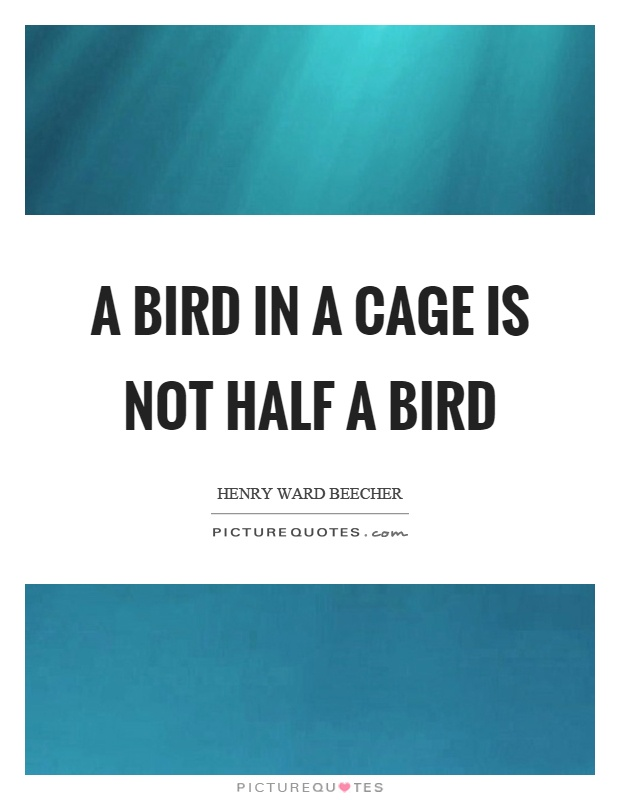 A bird in a cage is not half a bird Picture Quote #1