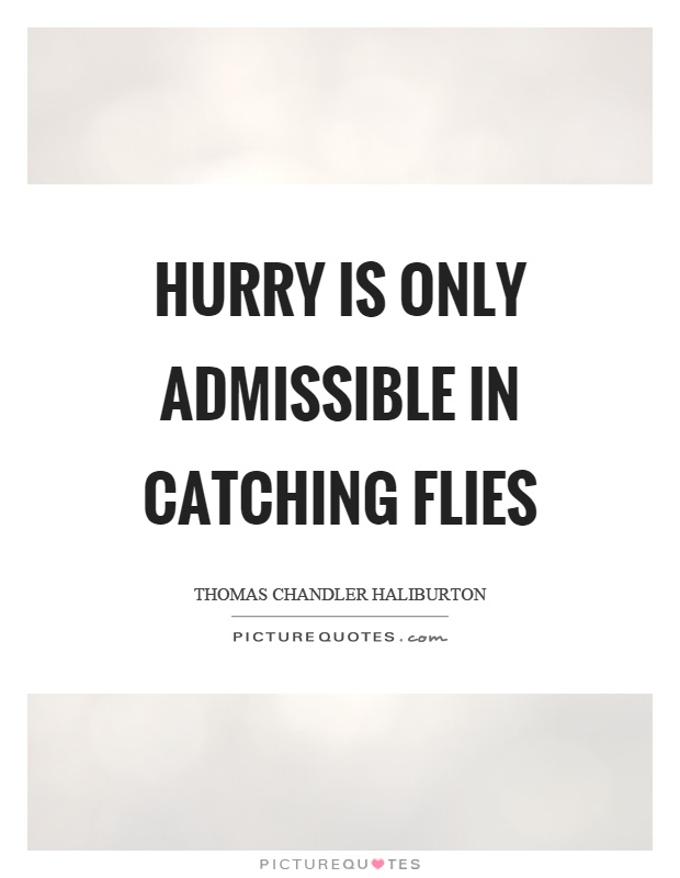 Hurry is only admissible in catching flies Picture Quote #1