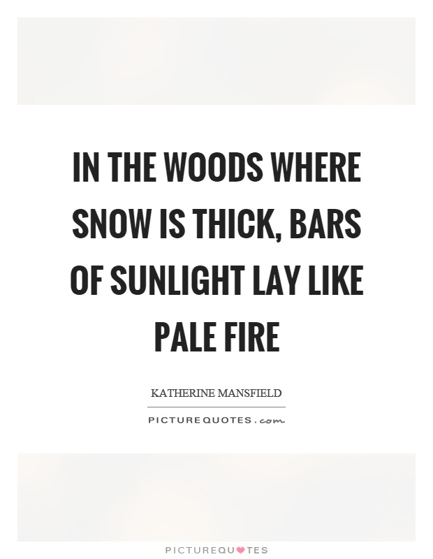In the woods where snow is thick, bars of sunlight lay like pale fire Picture Quote #1