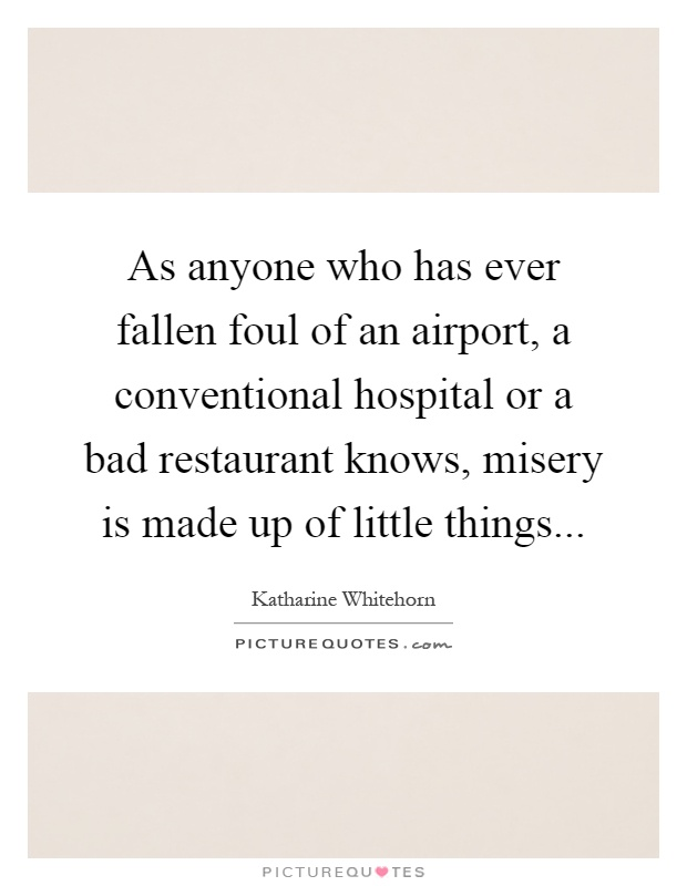 As anyone who has ever fallen foul of an airport, a conventional hospital or a bad restaurant knows, misery is made up of little things Picture Quote #1