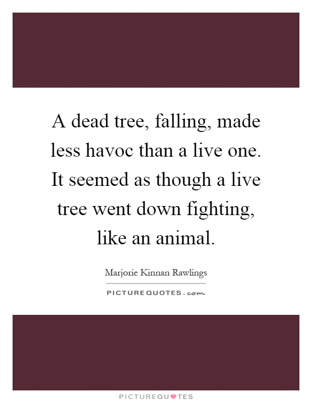 A dead tree, falling, made less havoc than a live one. It seemed as though a live tree went down fighting, like an animal Picture Quote #1