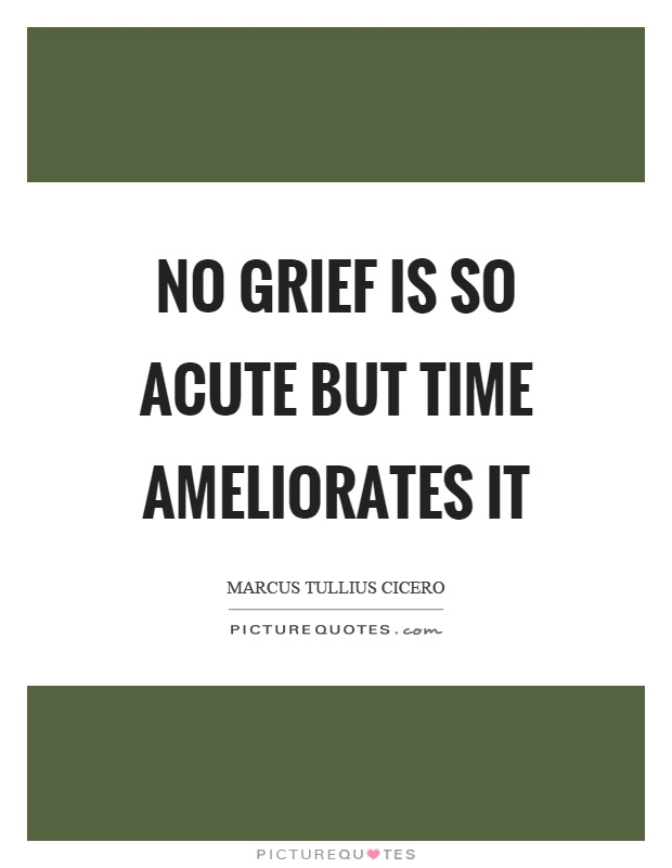 No grief is so acute but time ameliorates it Picture Quote #1