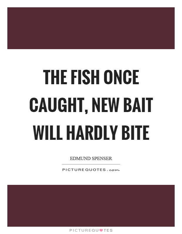 The fish once caught, new bait will hardly bite Picture Quote #1