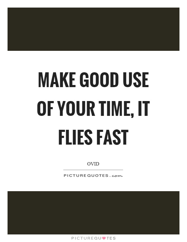 Make good use of your time, it flies fast | Picture Quotes