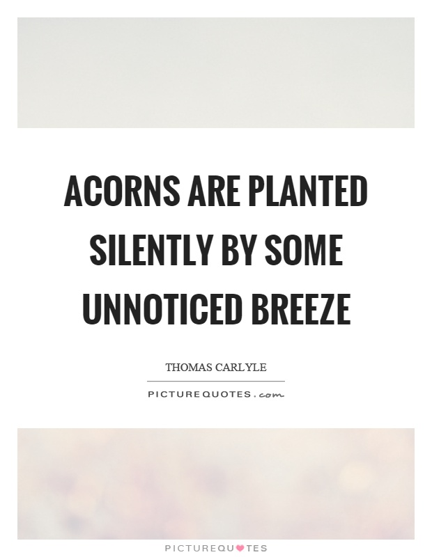 Acorns are planted silently by some unnoticed breeze Picture Quote #1