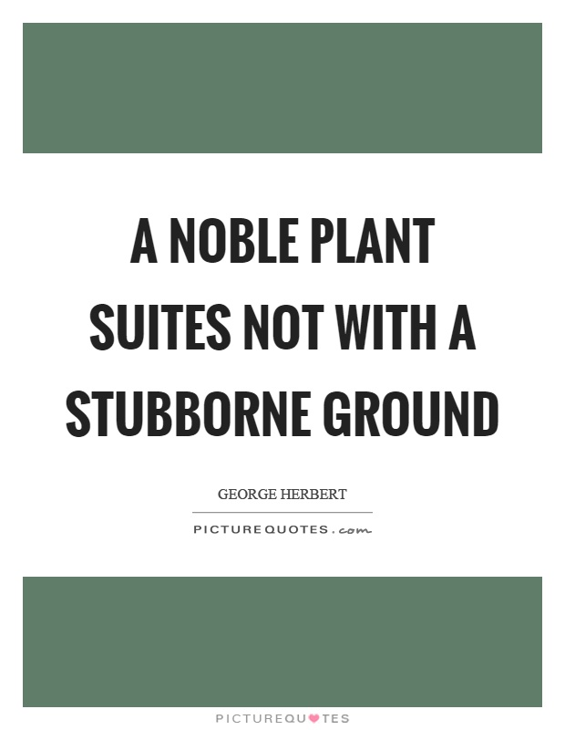 A noble plant suites not with a stubborne ground Picture Quote #1