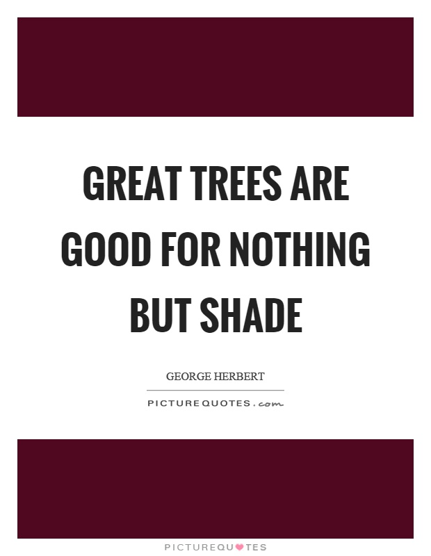 Great trees are good for nothing but shade Picture Quote #1