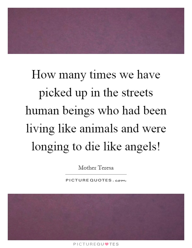 How many times we have picked up in the streets human beings who had been living like animals and were longing to die like angels! Picture Quote #1