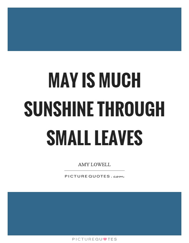 May is much sunshine through small leaves Picture Quote #1