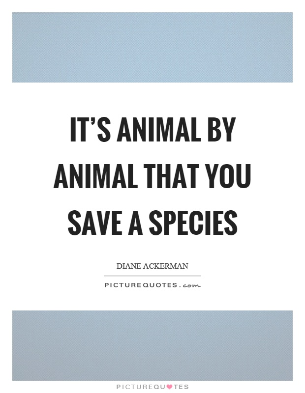 It's animal by animal that you save a species Picture Quote #1