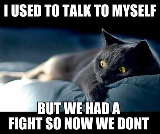 I used to talk to myself, but we had a fight so now we don't Picture Quote #1