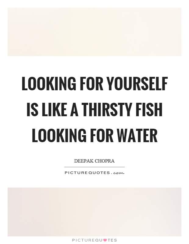 Looking for yourself is like a thirsty fish looking for water Picture Quote #1