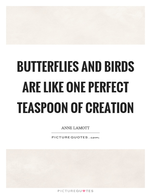 Butterflies and birds are like one perfect teaspoon of creation Picture Quote #1