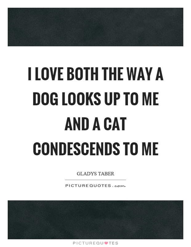 Cat Dog Quotes | Cat Dog Sayings | Cat Dog Picture Quotes