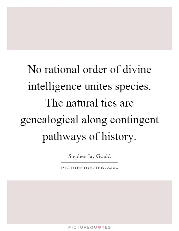 No rational order of divine intelligence unites species. The natural ties are genealogical along contingent pathways of history Picture Quote #1