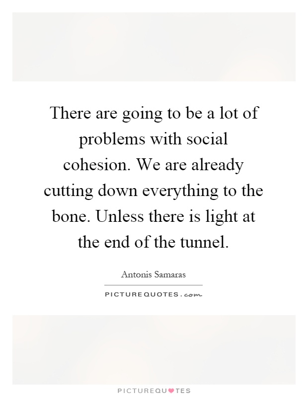 There are going to be a lot of problems with social cohesion. We are already cutting down everything to the bone. Unless there is light at the end of the tunnel Picture Quote #1