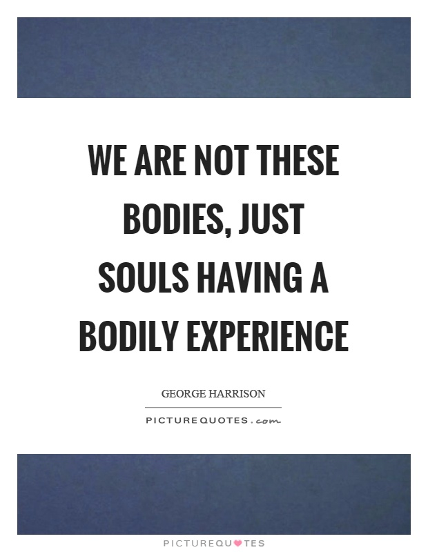 We are not these bodies, just souls having a bodily experience Picture Quote #1