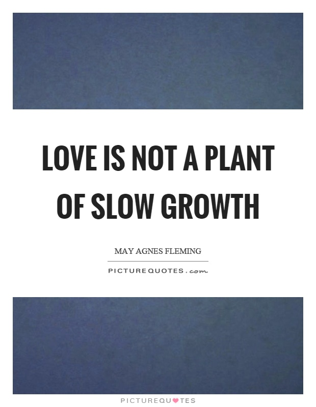 Love is not a plant of slow growth Picture Quote #1