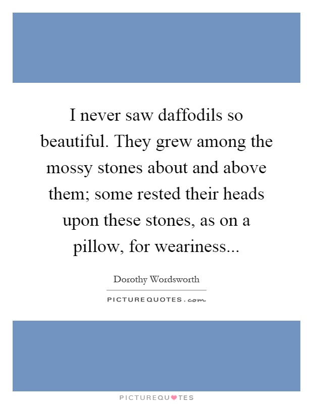 I never saw daffodils so beautiful. They grew among the mossy stones about and above them; some rested their heads upon these stones, as on a pillow, for weariness Picture Quote #1