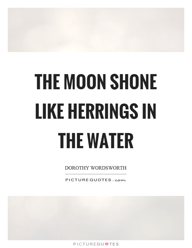 The moon shone like herrings in the water Picture Quote #1