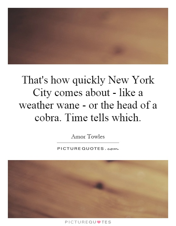 new york city weather