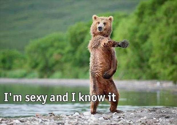I'm sexy and I know it Picture Quote #2