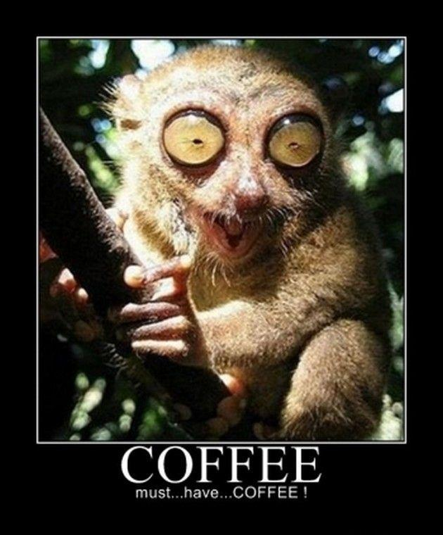 Coffee - must.. have...  COFFEE!!! Picture Quote #1