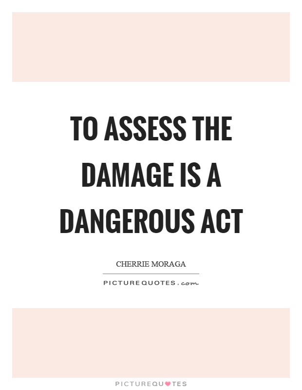 To assess the damage is a dangerous act Picture Quote #1