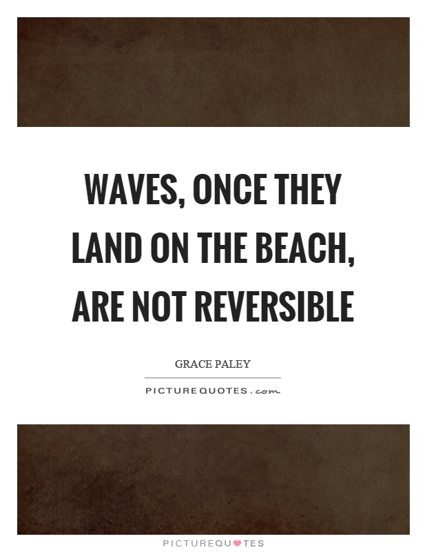Waves, once they land on the beach, are not reversible Picture Quote #1