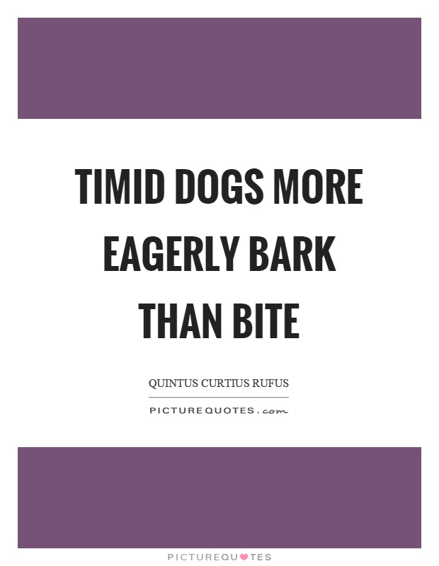 Timid dogs more eagerly bark than bite Picture Quote #1