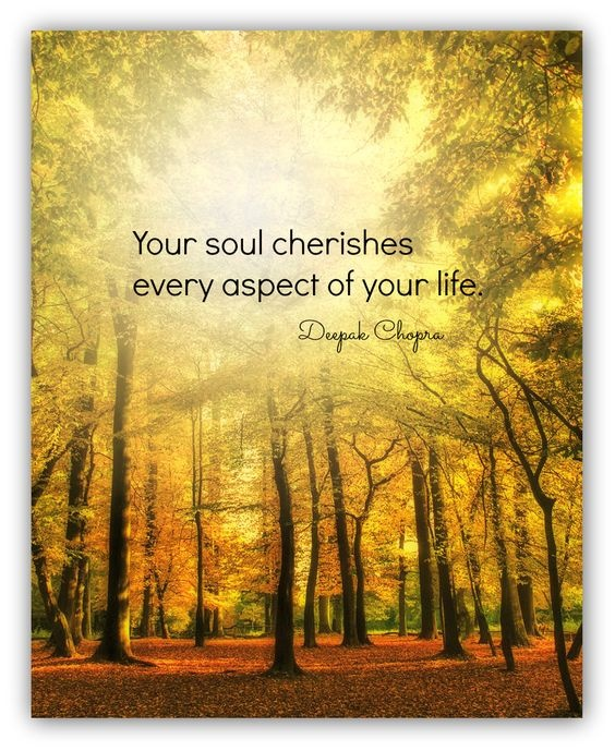 Your soul cherishes every aspect of your life Picture Quote #1