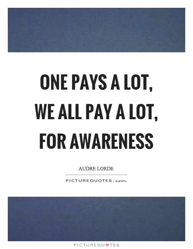One pays a lot, we all pay a lot, for awareness Picture Quote #1