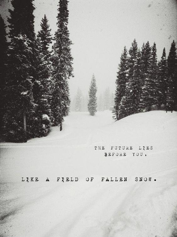 The future lies before you, life a field of fallen snow Picture Quote #1