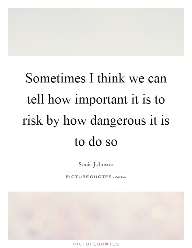 Sometimes I think we can tell how important it is to risk by how dangerous it is to do so Picture Quote #1