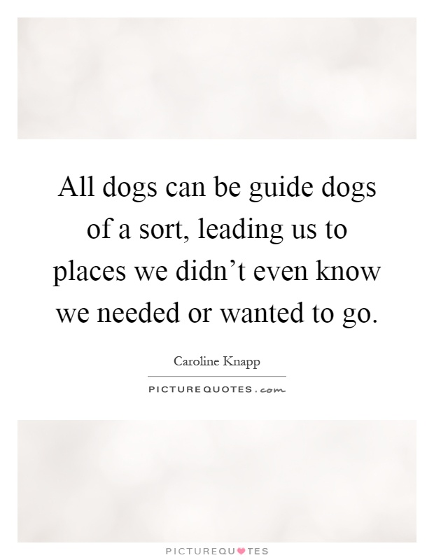 All dogs can be guide dogs of a sort, leading us to places we didn't even know we needed or wanted to go Picture Quote #1