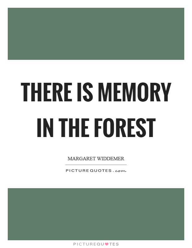 There is memory in the forest Picture Quote #1