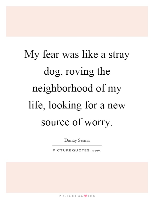 My fear was like a stray dog, roving the neighborhood of my life, looking for a new source of worry Picture Quote #1