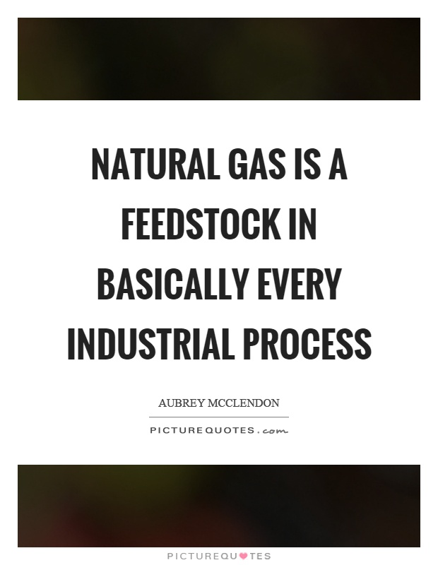 Natural gas is a feedstock in basically every industrial process Picture Quote #1
