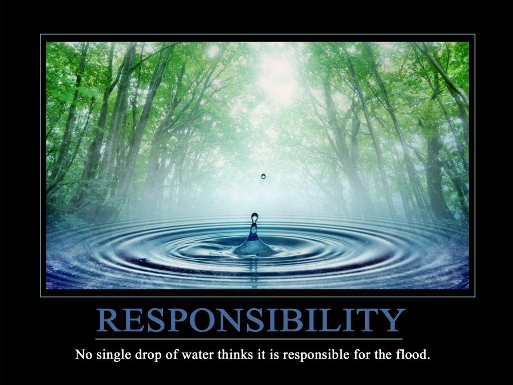 Responsibility. No single drop of water thinks it is responsible for the flood Picture Quote #1